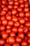 Tomatoes. Pile of fresh red tomatoes Stock Photo
