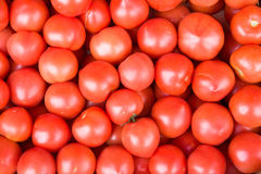 Tomatoes pile heap Royalty Free Stock Photography