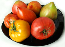 Tomatoes on a plate Royalty Free Stock Photography