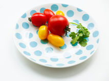 Tomatoes on a plate Royalty Free Stock Image