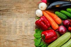 Tomatoes, potatoes, eggplant, zucchini, onion, carrot, radish, c Stock Photography