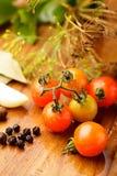 Tomatoes preserves Royalty Free Stock Photos