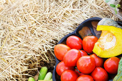 Tomatoes and pumpkin in wooden bowlin with empty space for some Stock Photography