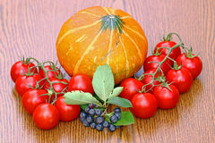 Tomatoes and pupkin Stock Images