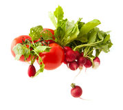 Tomatoes and radish Royalty Free Stock Photography