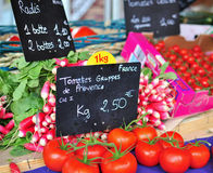 Tomatoes and radishes Stock Images