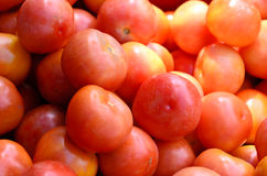 Tomatoes in real market royalty free stock image