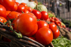 Tomatoes. Red tomatoes in the brown basket on sunny day Stock Image