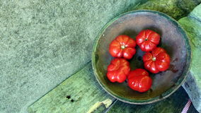 Tomatoes 46. Red tomatoes in clay pot on table Royalty Free Stock Image