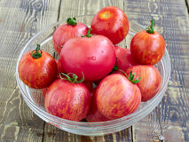 Tomatoes. Red fresh tomatoes in a bowl Stock Photography