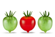 Tomatoes. Red, green fresh, organic. Isolated on white backgroun. Tomatoes, red, green fresh, organic. Isolated on white background. Business concept - how to Royalty Free Stock Photos