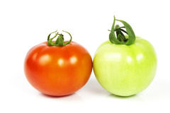 Tomatoes. Red and green tomato Stock Images