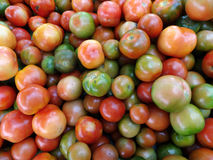 Tomatoes of Red, orange, and green color Royalty Free Stock Photo