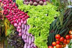 Tomatoes , red radish Royalty Free Stock Photo
