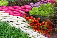 Tomatoes , red radish Stock Image