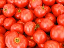 Tomatoes. Red ripe farmers market fresh Royalty Free Stock Photography