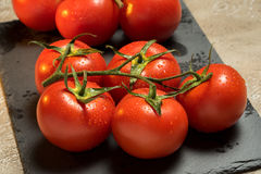 Tomatoes. Red ripe wet whole tomatoes Royalty Free Stock Photography