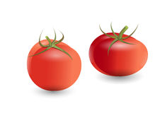 Tomatoes ,red tomatoes on white background,vector illustration Stock Photography