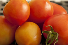 Tomatoes Ripe. A close-up shot of a pile of ripe red tomatoes Royalty Free Stock Photo