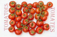 Tomatoes. Ripe tomatoes on white background, tomatoes in Spanish and English Royalty Free Stock Image