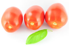 Tomatoes (roma - solanum lycopersicum) with green leaf Royalty Free Stock Photos