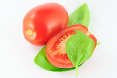 Tomatoes (roma - solanum lycopersicum) with green leaves Royalty Free Stock Image