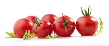Tomatoes and ruccola (arugula) Royalty Free Stock Image