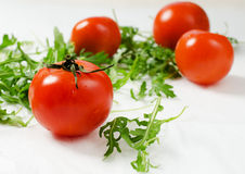 Tomatoes with rucola Royalty Free Stock Images
