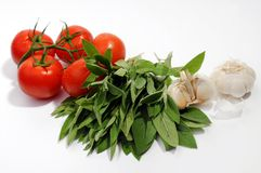 Tomatoes, sage leafs and garlic. On white stock photo