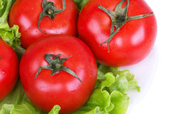 Tomatoes on salad Royalty Free Stock Images