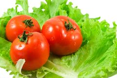 Tomatoes salad Stock Photography