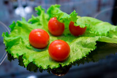 Tomatoes and salad. Some tomatoes and salad lying on glass surface Stock Image