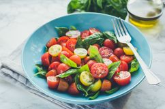 Tomatoes salad with basil stock photography