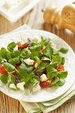 Tomatoes salad with cheese Royalty Free Stock Photos