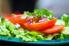 Tomatoes and salad Royalty Free Stock Images