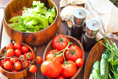 Tomatoes, salad and cucumbers-vegetables for picnic. Outdoors. Royalty Free Stock Photography