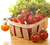 Tomatoes and salad in wooden basket isolated. Tomatoes and salad in  wooden basket on the table Royalty Free Stock Images