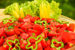 Tomatoes salade with green peppers Royalty Free Stock Images