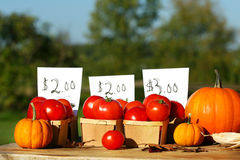 Tomatoes for sale Stock Image