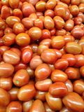 Tomatoes for Sale. Royalty Free Stock Photography