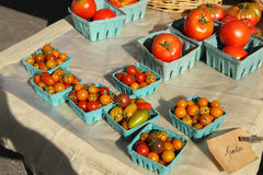 Tomatoes for sale at a farmer's market Royalty Free Stock Photos