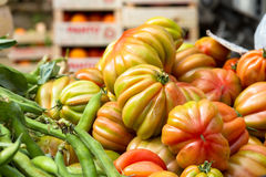 Tomatoes for sale at market Stock Photography