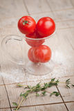 Tomatoes an salt Royalty Free Stock Photography