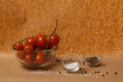 Tomatoes, salt and spice Stock Photography