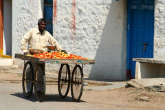 Tomatoes seller Stock Photography