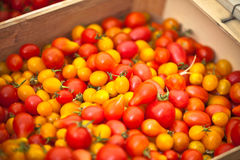 Tomatoes selling in a market Stock Images