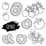 Tomatoes set collection Stock Photography