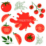 Tomatoes. Set of fresh healthy red tomatoes made in flat style. Great for design of healthy lifestyle or diet. Single tomato, half a tomato, a slice of tomato Stock Images