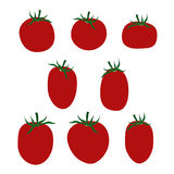 Tomatoes. Set of various tomatoes - vector illustration Stock Photography