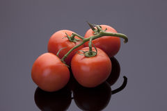Tomatoes on shiny black background. Stock Image